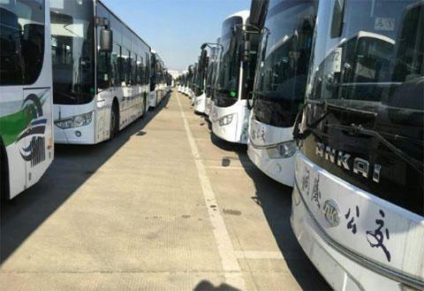关于铜陵公交启用96166客服号码的通知 原客服号码0562-2603817将停止使用